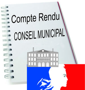 Conseil Municipal du 17 Novembre 2020