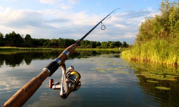Avis annuel 2021 relatif aux périodes d'ouverture de la pêche en eau douce en Haute Savoie